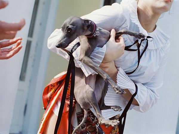 Hermes Kachinas gm scarf